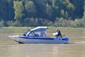 Vancouver, Chilliwack, Sturgeon, Fishing, Fraser River, Harrison River, Fly Fishing