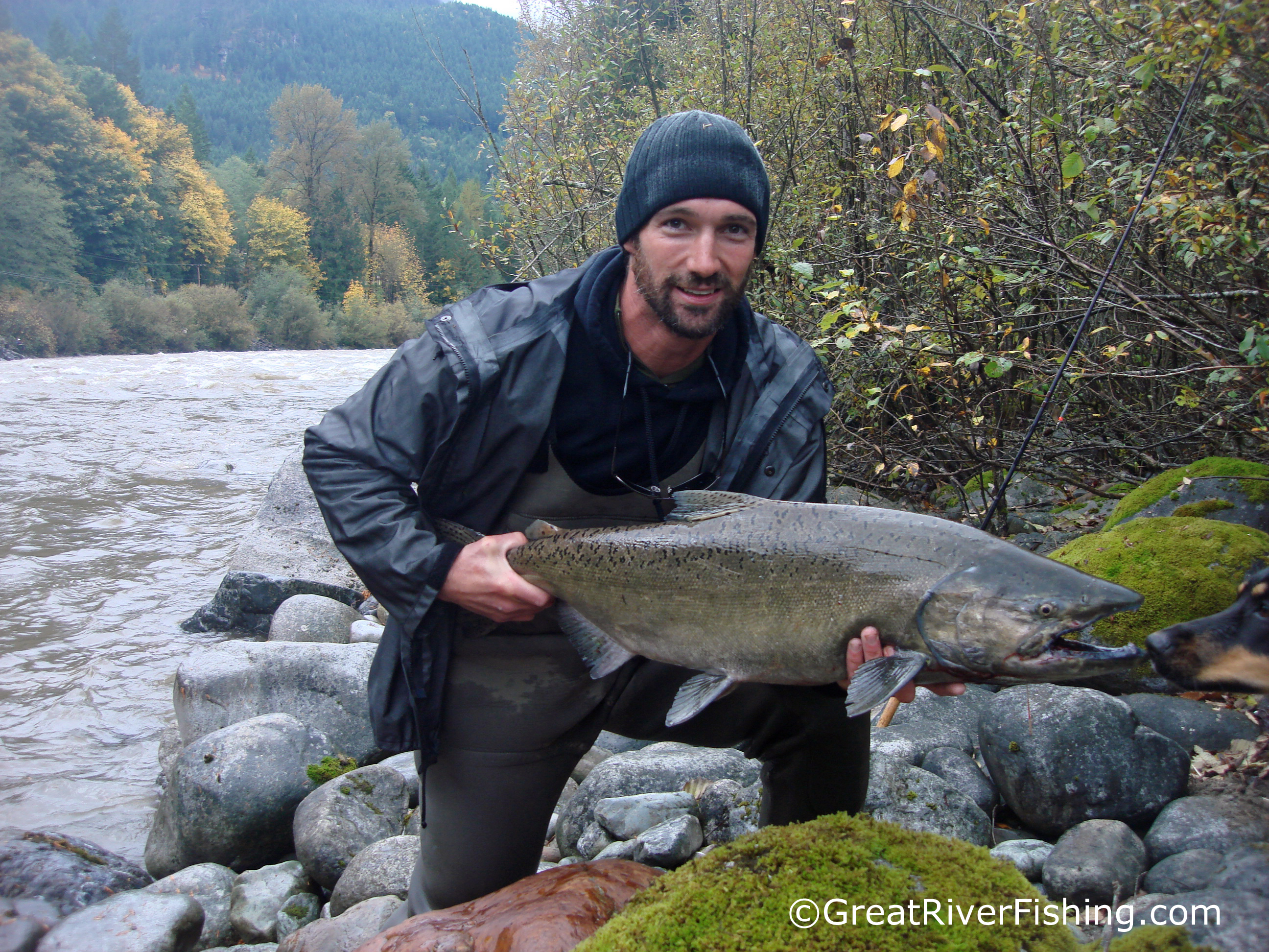 Fishing report vancouver fraser valley 20 10 12 for Fraser river fishing