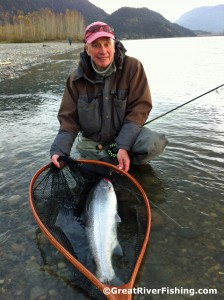 Fraser River Steelhead
