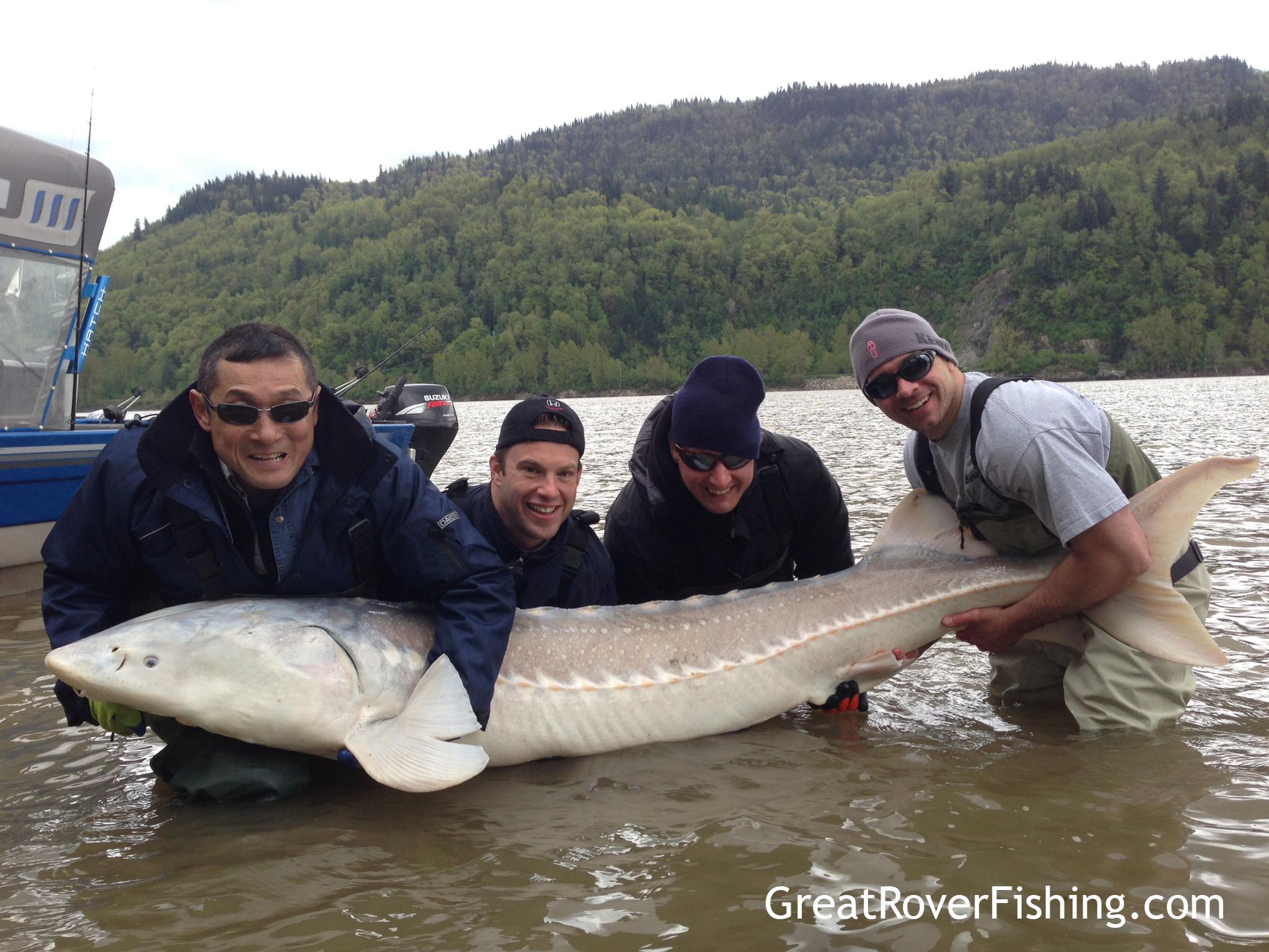 Fishing report vancouver fraser valley 05 02 13 for Fraser river fishing