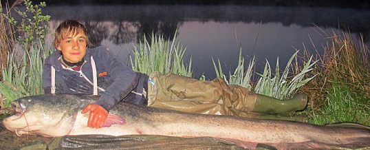 GRFA Client and Friend Catches Largest Freshwater fish in the UK