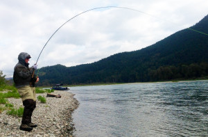 Fraser River Salmon Fishing