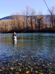 Vedder River Steehead Fishing
