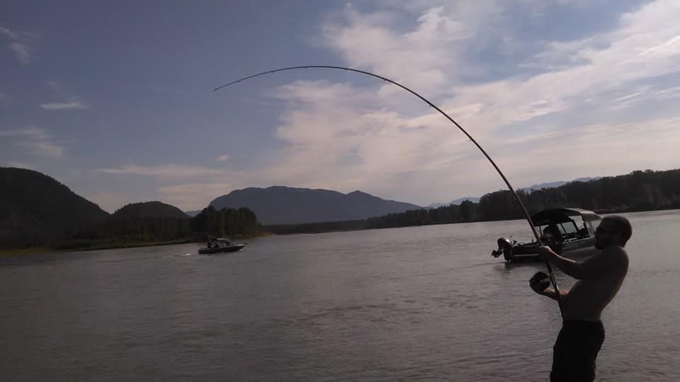 Fishing report for chilliwack to vancouver august 6 for Washington river fishing reports