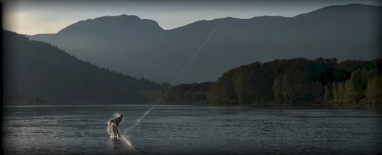 Fishing Report for Chilliwack to Vancouver – October 20, 2017