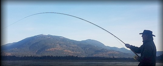 Fishing Report for Chilliwack to Vancouver – October 24, 2018