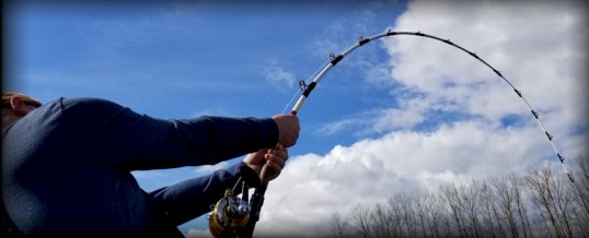 Fishing Report for Chilliwack to Vancouver – March 22, 2019