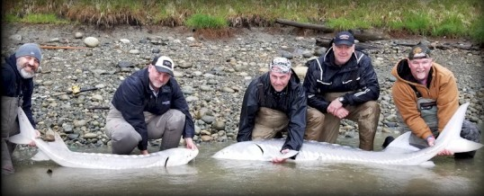 Fishing Report for Chilliwack to Vancouver – April 24, 2019