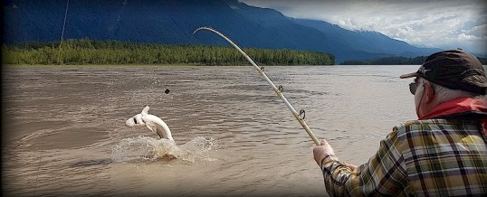 Fishing Report for Chilliwack to Vancouver – July 25, 2019
