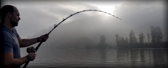 Fishing Report for Chilliwack to Vancouver – October 28, 2020